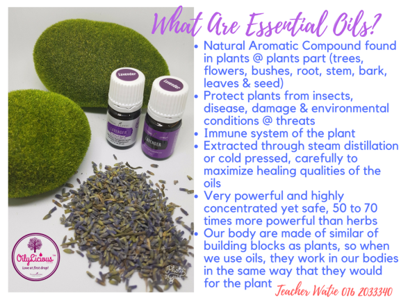 What are Essential Oils (Watie)
